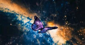 butterfly against galaxies